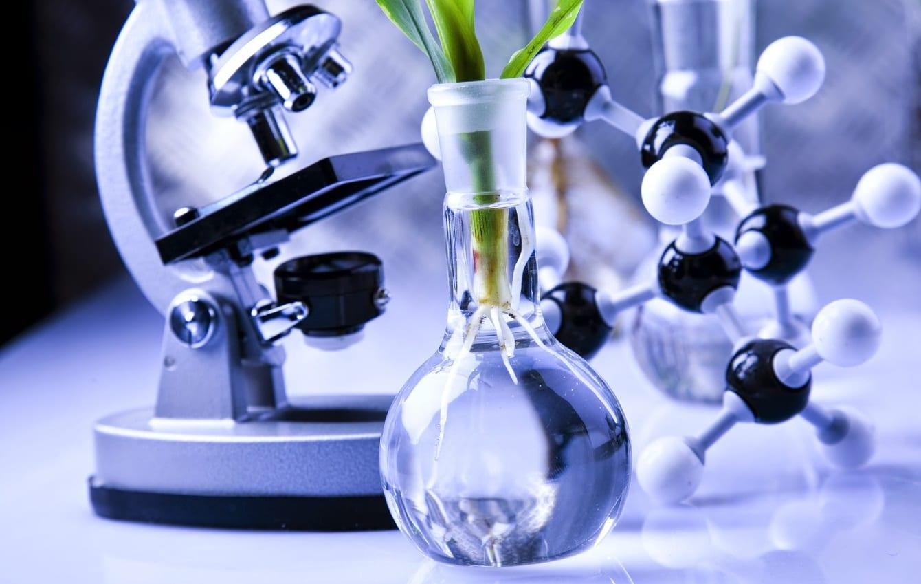 laboratoire plante microscope